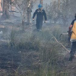 El fuego arrasó con más de dos hectáreas del parque misionero.