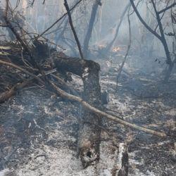 Lo bomberos tienen que realizar varios kilómetros a pie para llegar al lugar y cumplir con su tarea.