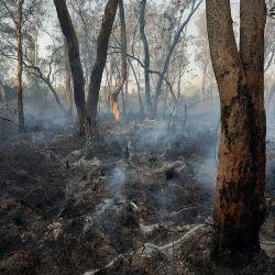 El fuego se originó en las inmediaciones de la aldea myba guaraní Fortín Mbororé, ubicada en el límite de la Reserva Municipal El Eucaliptal, en Puerto Iguazú.