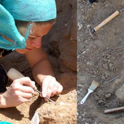 Se extinguieron de la faz de la tierra hace unos 12.000 años.