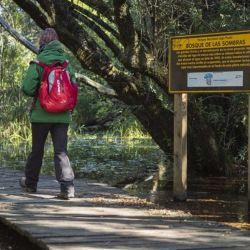 Lago Puelo es uno de los Parques Nacionales que participa de esta interesante propuesta.