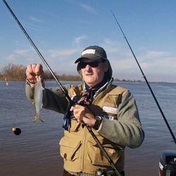 En líneas generales son dos las técnicas utilizadas para la pesca de esta especie.