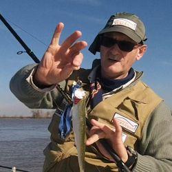 Otra de las técnicas preferida de los aficionados es la pesca al vuelo.