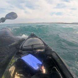 Las ballenas iban en su dirección, por lo que Andrés se dispuso a disfrutar del espectáculo desde muy cerca.