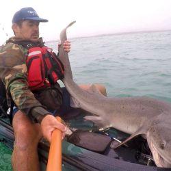 La pesca empezó al garete.