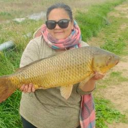 La pesca se realiza en el sector que está sobre la margen que regentea el Club de Pesca local.