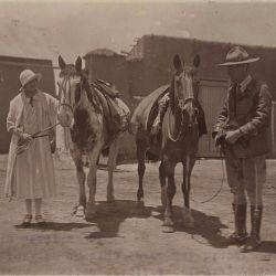 Los dos caballos patagónicos recorrieron más de 21.000 kilómetros
