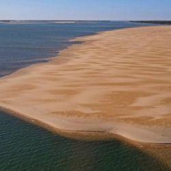 La bajante del río Paraná está provocando que más especies se desplacen en busca de mayor caudal de agua.
