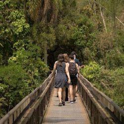 Los jóvenes de entre 16 y 29 años inclusive podràn ingresar, de manera gratuita, a todos los parques nacionales del país entre el 8 y el 15 de octubre.