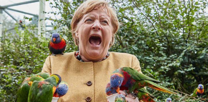 La canciller alemana, AngelaMerkel, reacciona mientras alimenta a los loritos en el Parque de las Aves en Marlow, en el norte de Alemania.