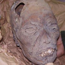 Las momias forman parte de la colección del Museo de La Plata.
