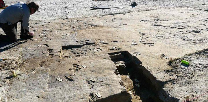 Muestra huellas fosilizadas que se están preparando para imágenes tridimensionales en Nuevo México. - Las huellas que datan de hace 23.000 años se han descubierto en los EE. UU.