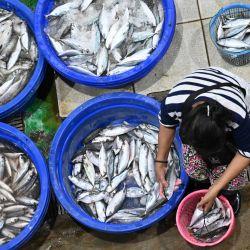 Una mujer trabaja en el mercado de pescados en Yakarta. | Foto:Adek Berry / AFP