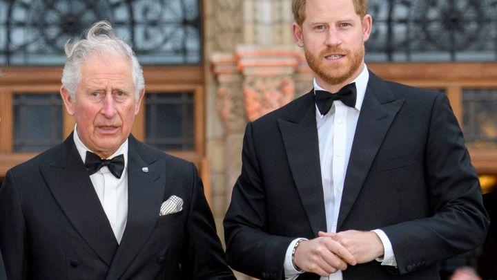 El proyecto con el que el príncipe Carlos le hará competencia a Harry y Meghan