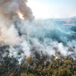Wildfires in Brazil have consumed farms, destroying lands of one of the world's largest agricultural producers.