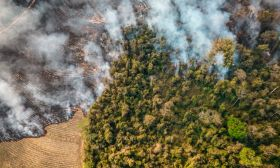 climate change wildfires Brazil