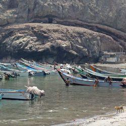 Pescadores yemeníes trabajan en sus barcos en la ciudad portuaria meridional de Adén.   Foto:SALEH OBAIDI / AFP