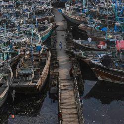 Barcos de pesca anclados en el puerto pesquero de Karachi después de que las autoridades paquistaníes emitieran un aviso para desanimar a los pescadores a aventurarse en el mar Arábigo esperando malas condiciones meteorológicas debido a la tormenta ciclónica Gulab. | Foto:Asif Hassan / AFP