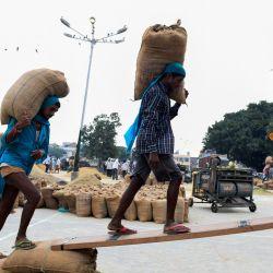 Los trabajadores cargan un carro de tractor con bolsas de grano de arroz en un mercado de grano al por mayor en Amritsar. | Foto:Narinder Nanu / AFP