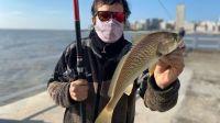 Dónde se puede ir a pescar: 180 ámbitos para elegir