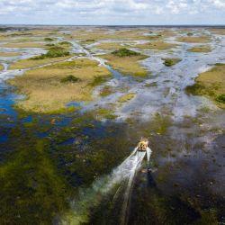 Una lancha neumática navega el humedal de los Everglades en el Parque Nacional de los Everglades, Florida.   Foto:CHANDAN KHANNA / AFP