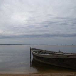 Bote de río