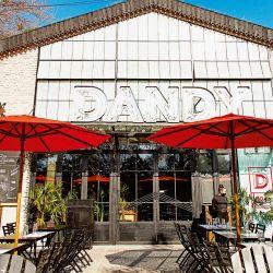 Dandy | Foto:Dandy