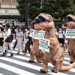 Activistas del grupo de derechos de los animales PETA instan a la gente a hacerse vegana durante una protesta en Tokio. | Foto:Charly Triballeau / AFP