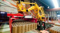 Cámara Industrial de Cerámica Roja 20211012