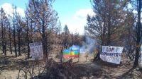 Toma de tierras en El Bolsón