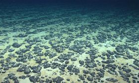 seabed floor polymetallic nodules