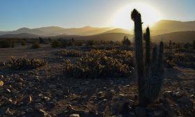 Atacama desert Dominga mining project