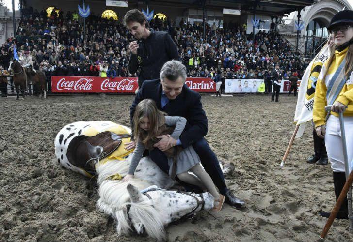 Antonia Macri se divirtió con los animales en la Rural.