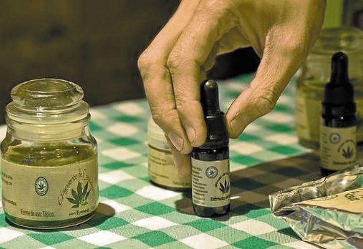 Extracto. El aceite se elabora a partir de las hojas de la planta.