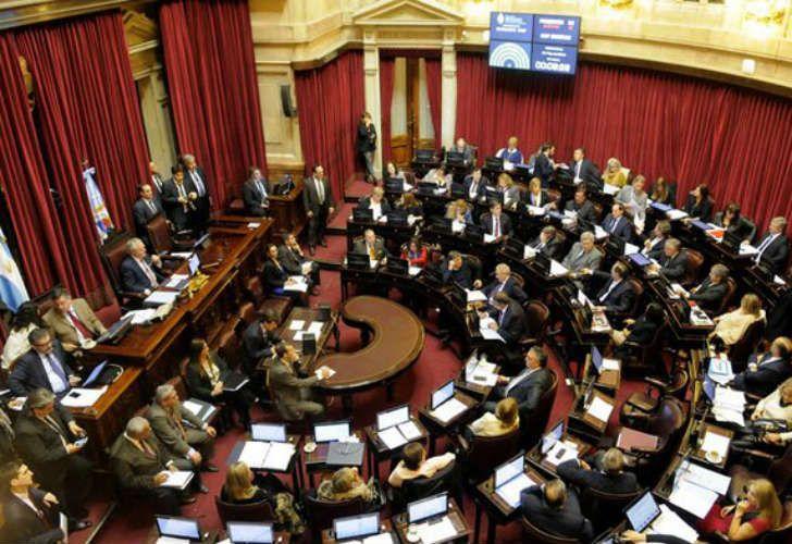 OPORTUNIDAD. El Poder Legislativo debe ser independiente del Ejecutivo y llevar adelante una estrategia propia en temas humanitarios.
