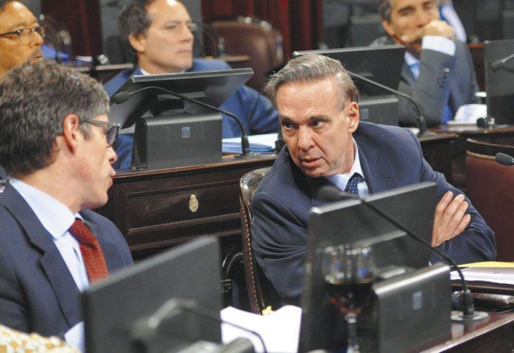 Pichetto. Le comunicó a los diputados que modificarían el proyecto que llegó de Diputados.