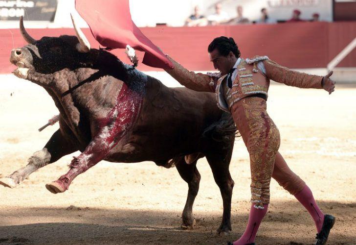 Falleció un torero luego de una cornada en una corrida en una plaza francesa.