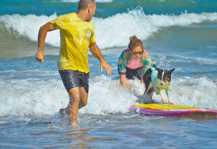 Juntos. Acompañados por un instructor, ayer, en las playas del Faro, una mujer y su mascota intentan sus primeros pasos sobre las olas.