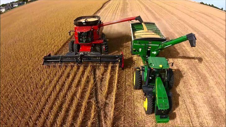 MAS AIRE. Con la disminución de las retenciones, el complejo agroindustrial está ganando terreno, aunque aún debe hacer frente a varios problemas.
