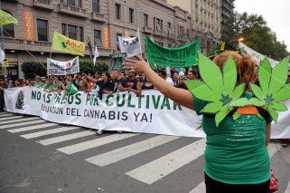 La ONU pide despenalizar la tenencia de drogas para consumo personal