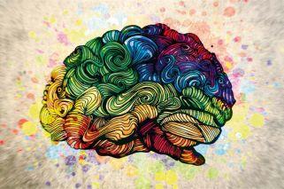 Adelanto del nuevo libro de Facundo Manes: El cerebro para chicos