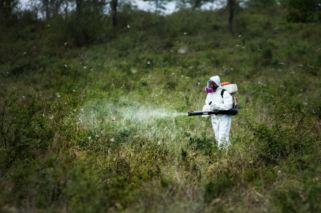 Europa busca prohibir los pesticidas en las áreas de interés ecológico