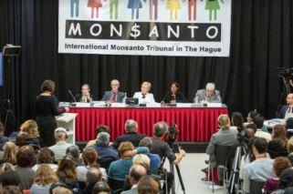 """¿Por qué la """"condena"""" a Monsanto no trae consecuencias legales?"""