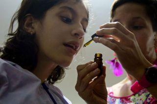 Cannabis medicinal: advierten que hay un mercado negro web