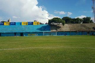 En Paraguay creció un árbol en plena tribuna y lo hicieron socio del club