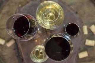 Pautas para tomar vino como lo haría un sommelier