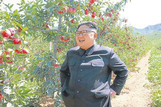 Norcorea: los expertos advierten que un error de cálculo activaría el 'peligro Kim'