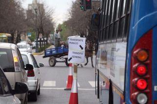 """El Metrobus """"low cost"""" de La Plata"""