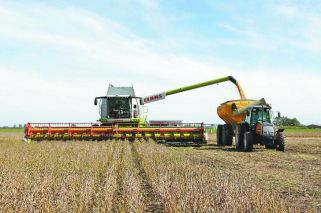 US and Argentina: friend and foe in agri-trade