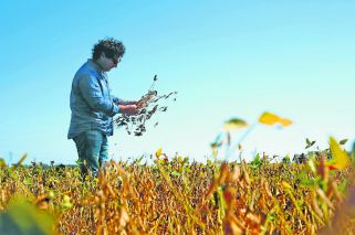 Drought hits farmers hard, undermining economy